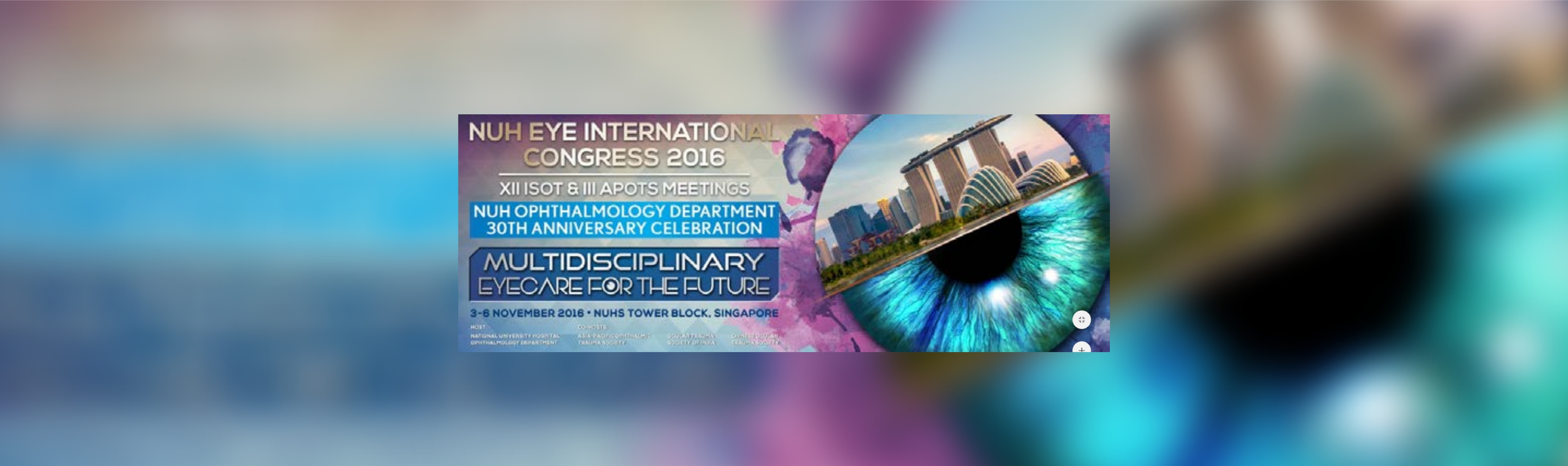 NUH Eye International Congress 2016 XII ISOT and III APOTS Meetings